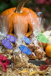 roasted-pumpkin-seeds-evermine-occasions-www-evermine-com_0002